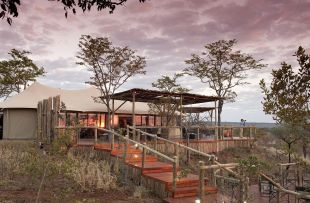 Elephant Camp - main lodge (WETU)